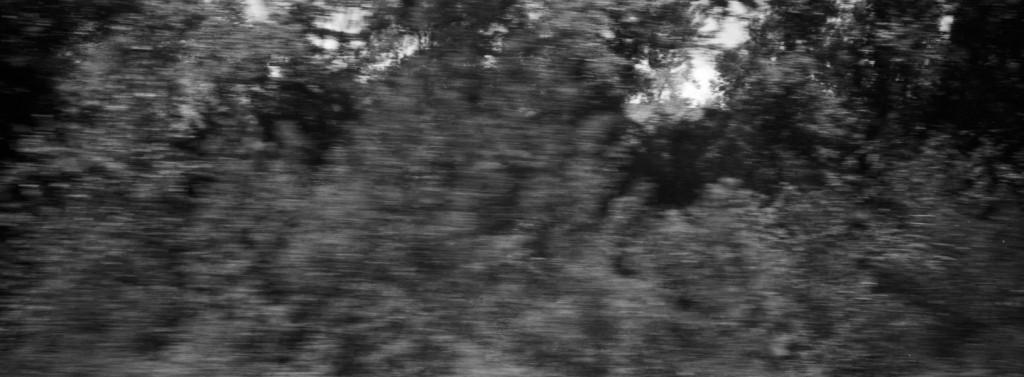 Train-Arles-Lyon-28
